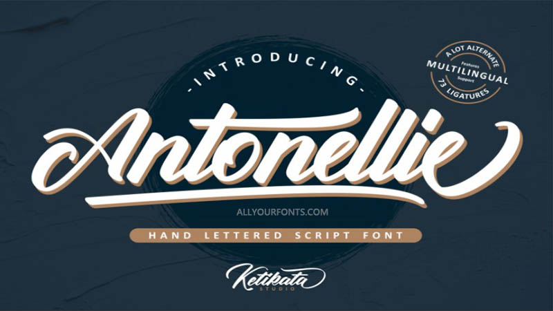 Antonellie Calligraphy Font Family Free Download