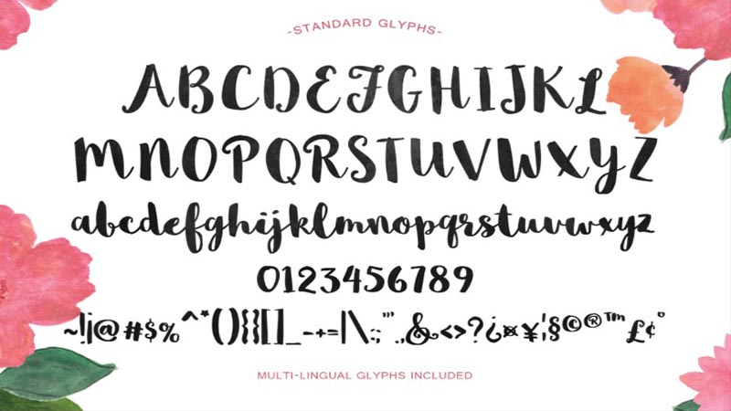 Mightype Font Family Download