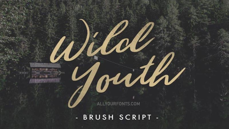 Wild Youth Font Free Download