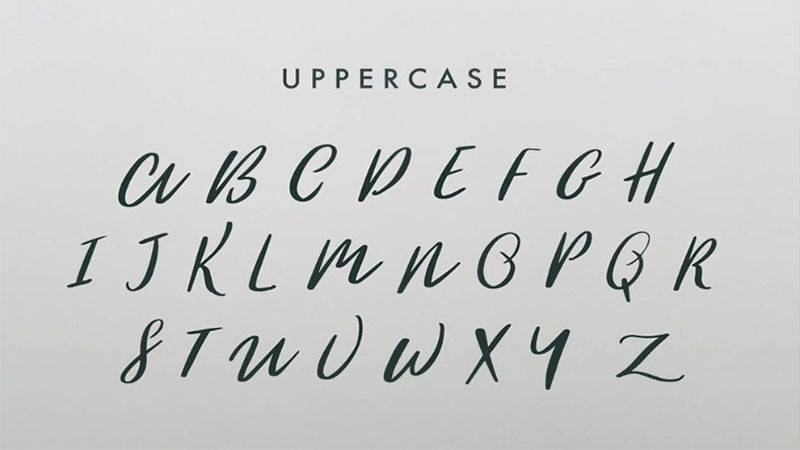 Woodlands Font Family Download