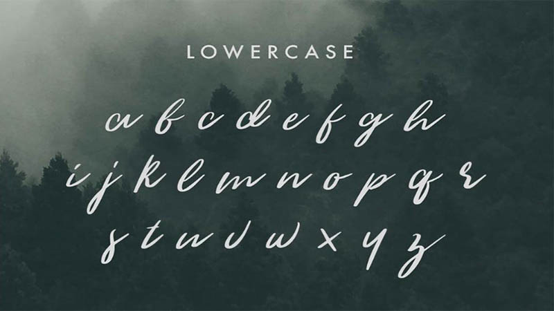 Woodlands Font Free Download