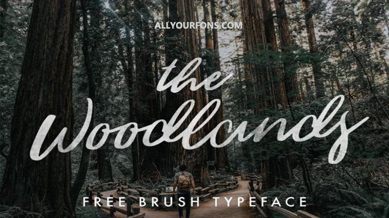 Woodlands Font Family Free Download