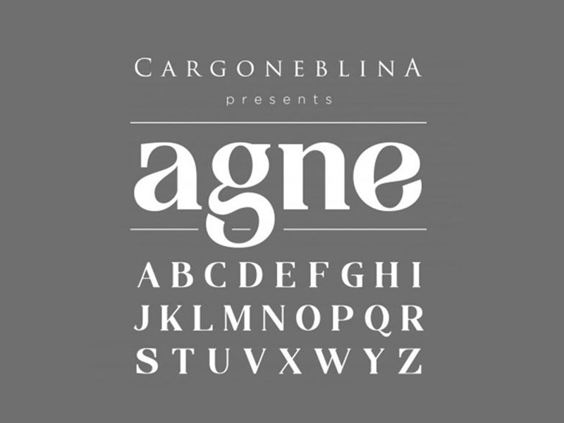 Agne Font Family Download