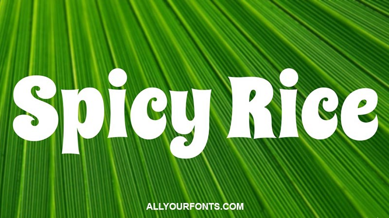 Spicy Rice Font Family Free Download