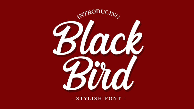 Blackbird Font Family Free Download